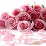 flowers-334